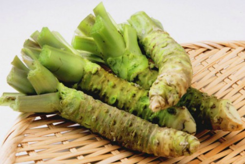 корень wasabi