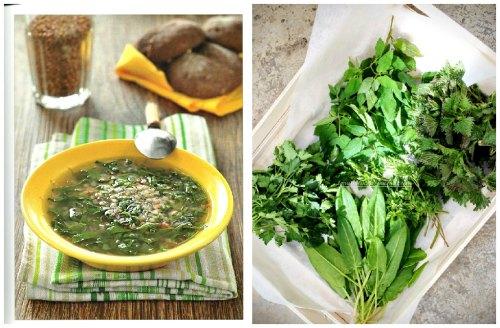 сочная зелень на суп