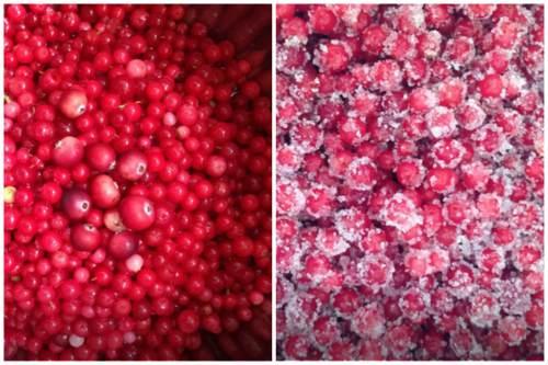 Засыпаем ягоду сахарком