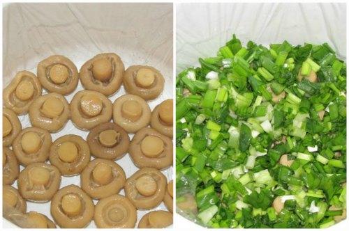 Грибы и зелень