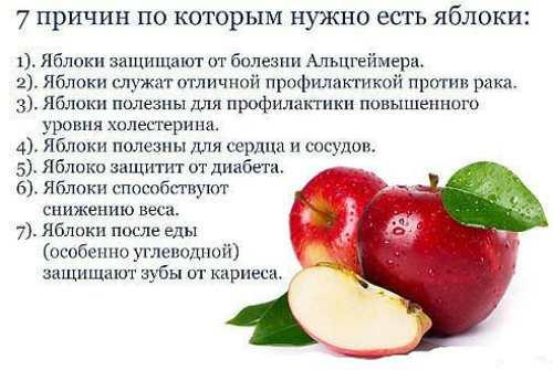 7 причин есть плоды