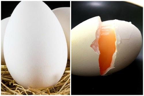 Полезные свойства гусиных яиц