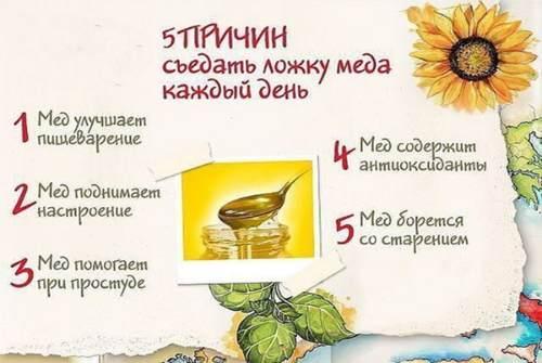причины есть мёд