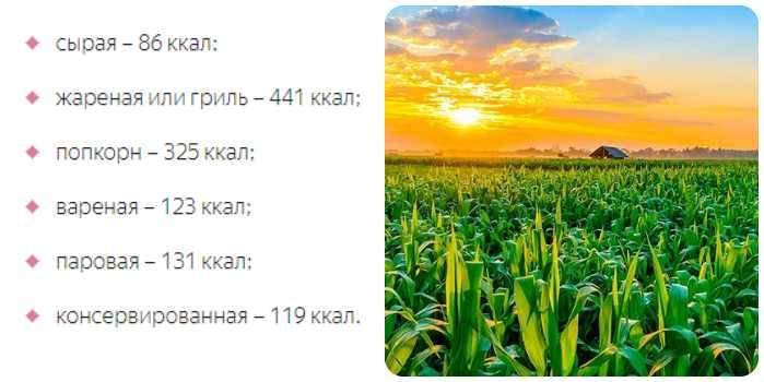 Калорийность кукурузы