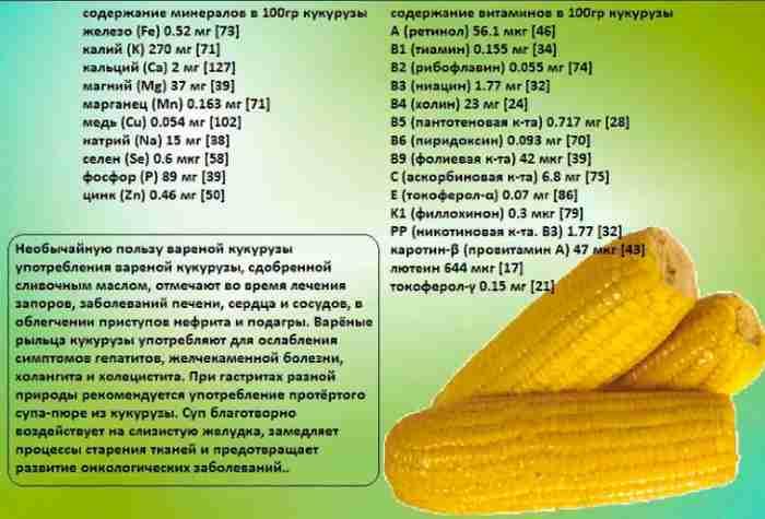 Пищевая ценность кукурузы